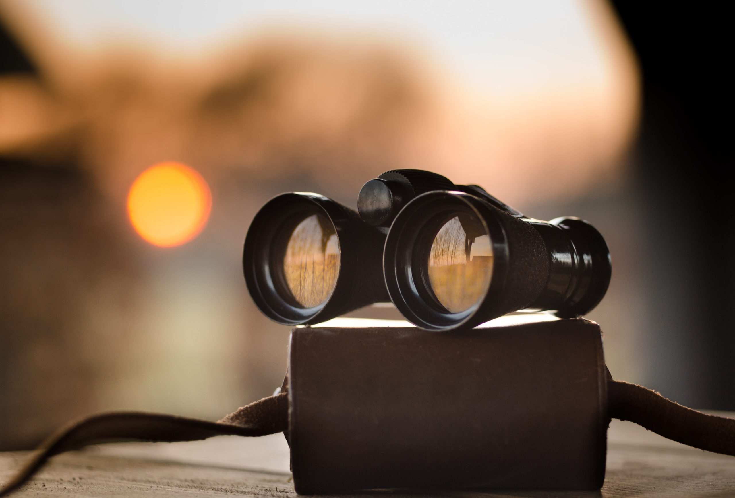 What to Look for in a Patent Search